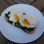 Healthy Eggs Florentine on a white plate