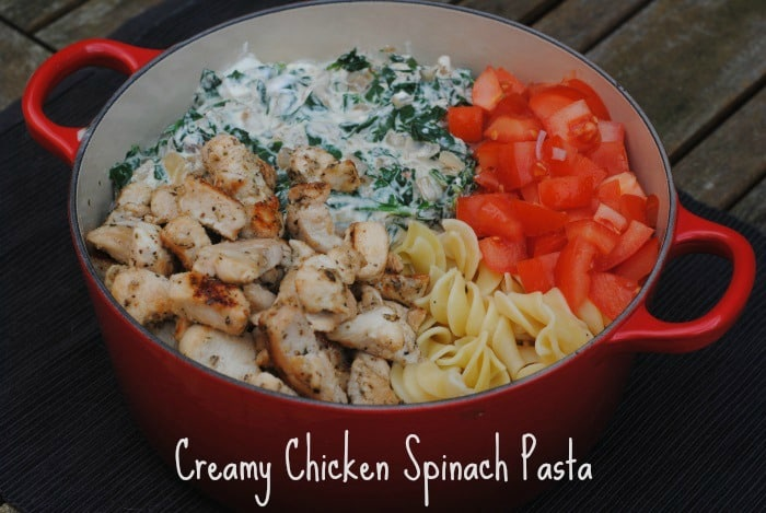Creamy Chicken Spinach Pasta 2