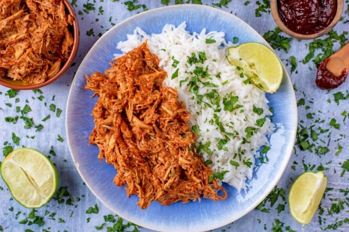 A blue plate with shredded chicken and rice