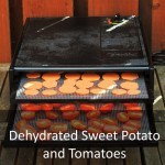 Dehydrated Sweet Potato and Tomatoes Featured