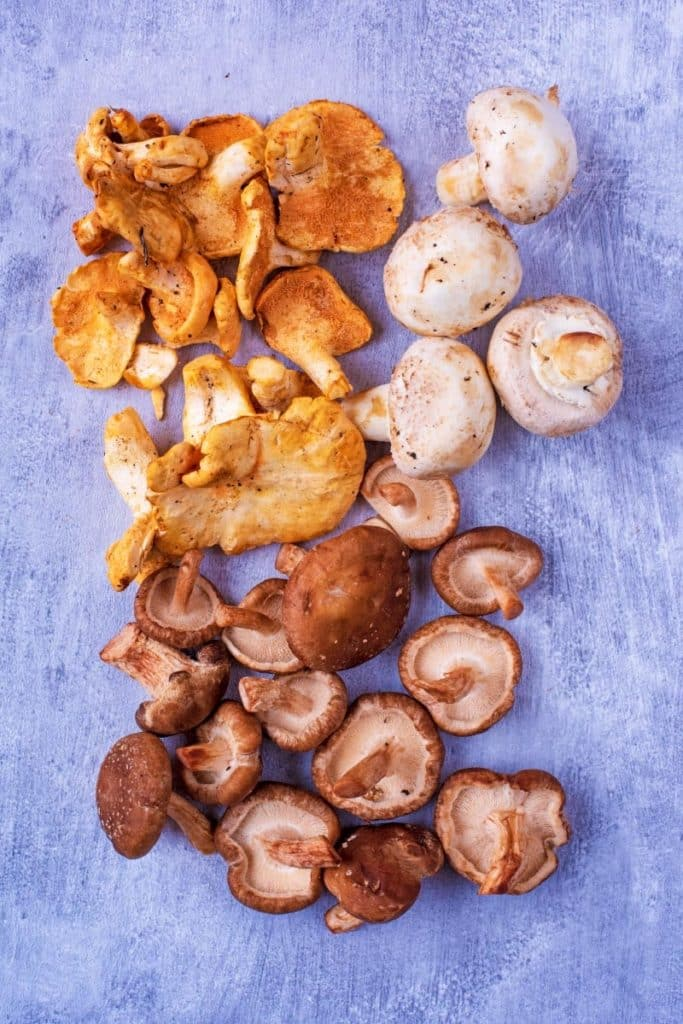 A selection of mixed mushrooms arranged on a metallic surface