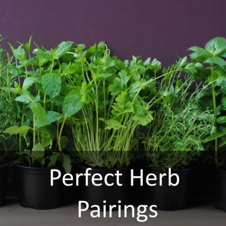 Perfect Herb Pairings Featured