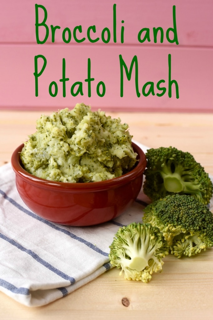 A red bowl full of Broccoli and Potato Mash