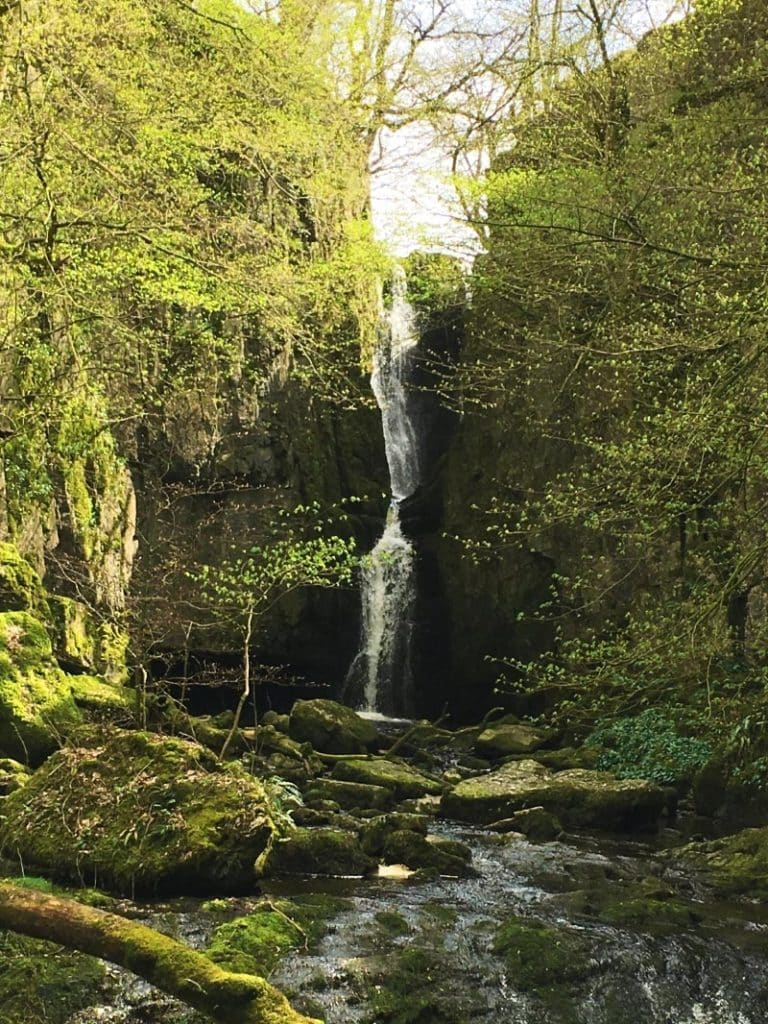 A waterfall in a tree lined valley
